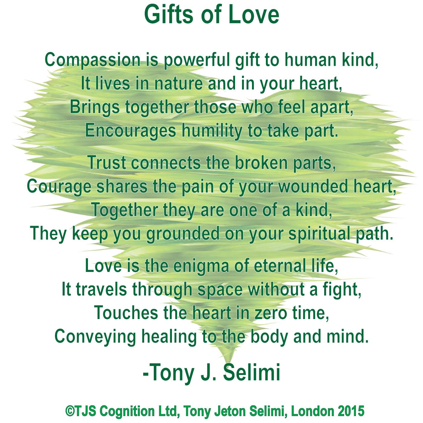 Gift-of-Love-by-Tony-J-Selimi