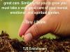 Spiritual-Garden-by-Tony-J-Selimi