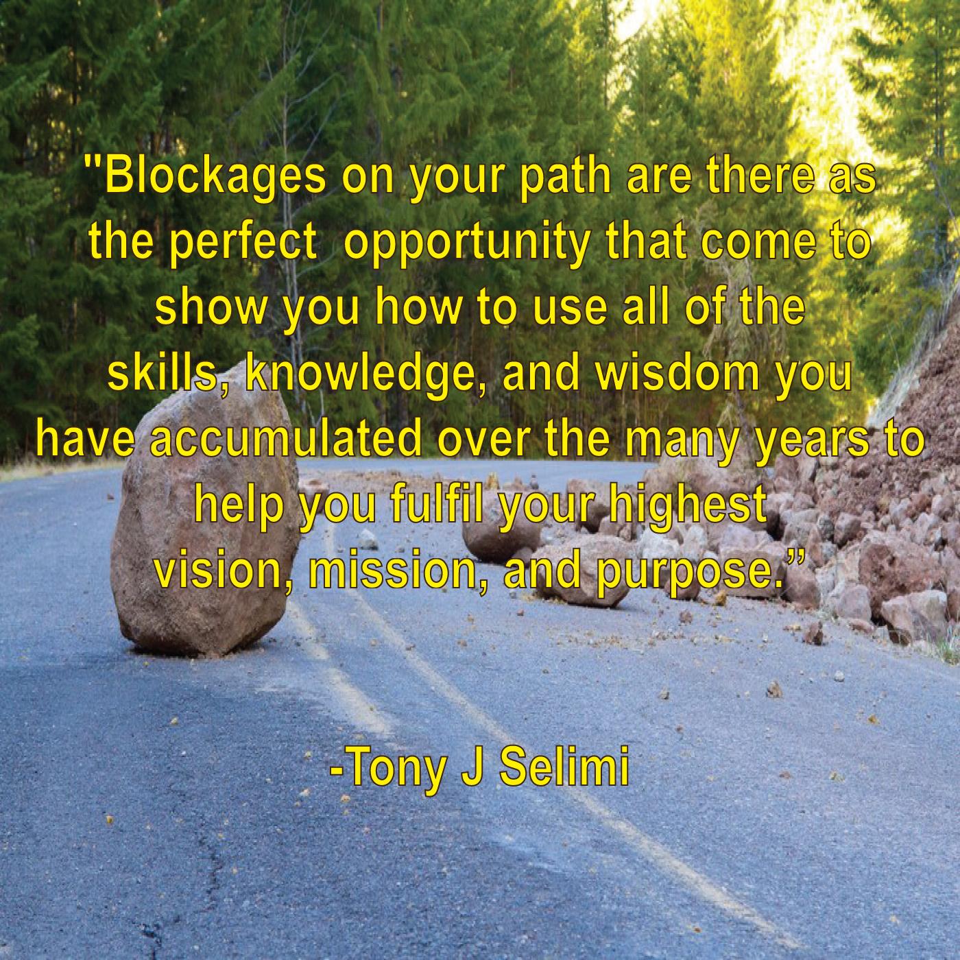Blockages-by-Tony-J-Selimi